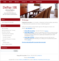 Depuy HR Associates Executive HR Solutions